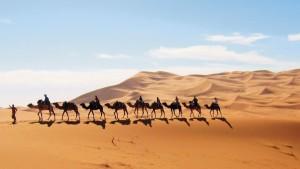 image afrique du nord